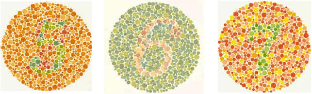 Color blindness essays